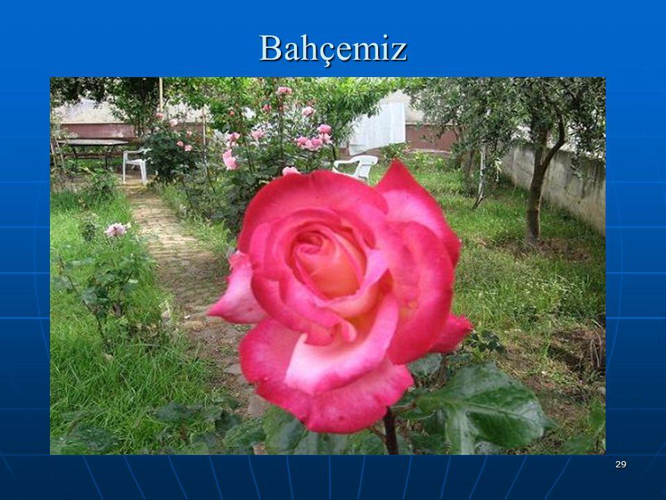 29 Bahçemiz