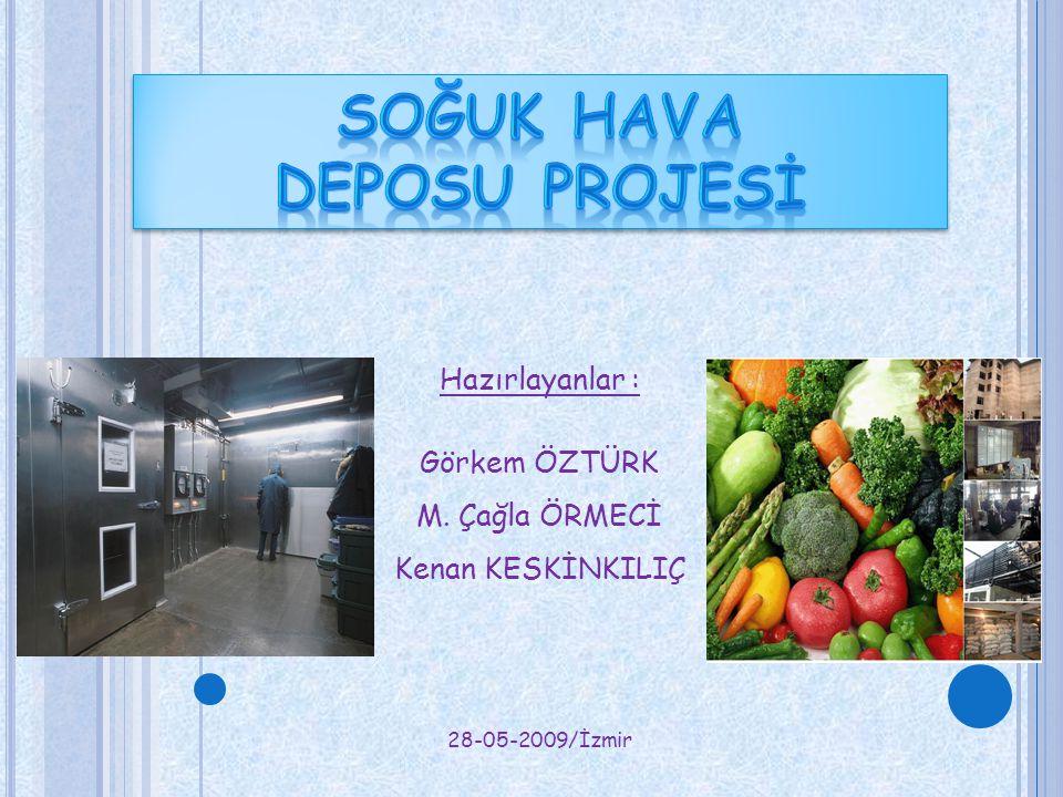 Hazırlayanlar : Görkem ÖZTÜRK M. Çağla ÖRMECİ Kenan KESKİNKILIÇ 28-05-2009/İzmir