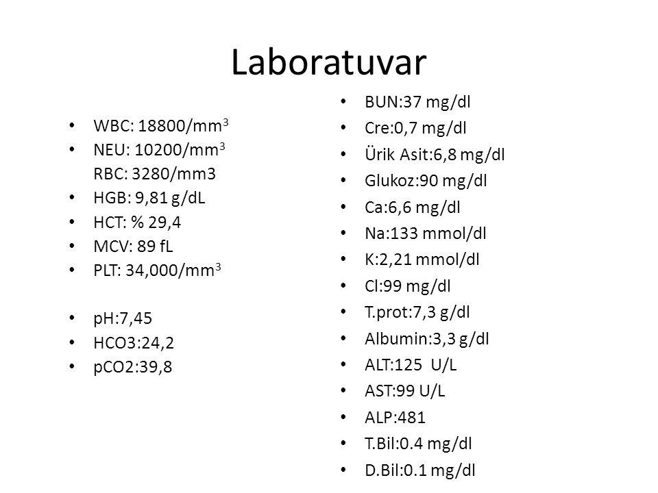 Laboratuvar WBC: 18800/mm 3 NEU: 10200/mm 3 RBC: 3280/mm3 HGB: 9,81 g/dL HCT: % 29,4 MCV: 89 fL PLT: 34,000/mm 3 pH:7,45 HCO3:24,2 pCO2:39,8 BUN:37 mg