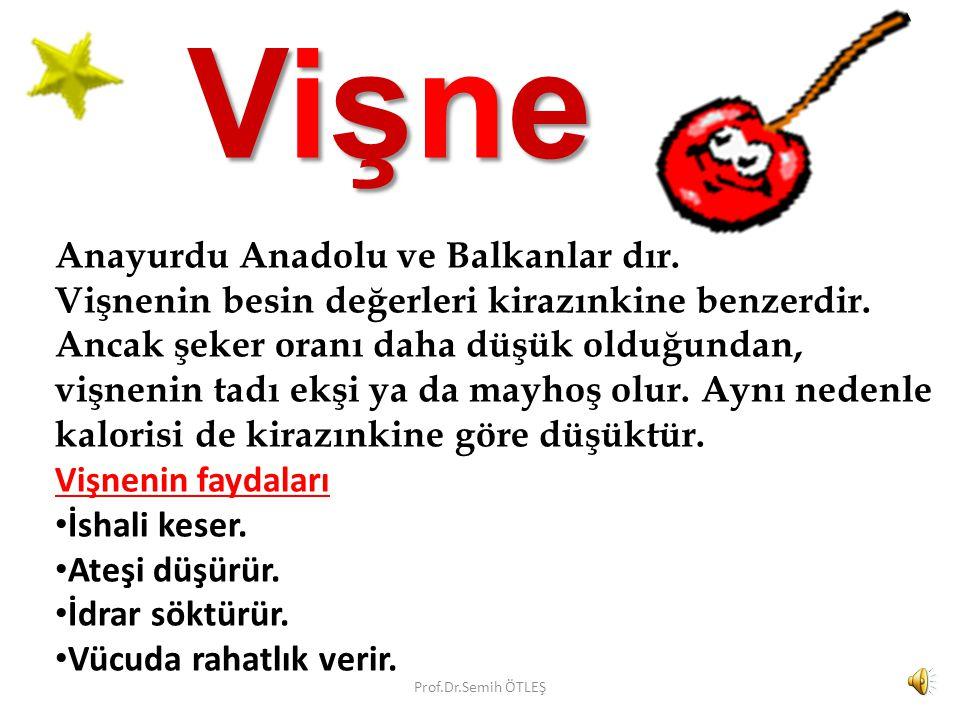 VişneVişneVişneVişne Anayurdu Anadolu ve Balkanlar dır.
