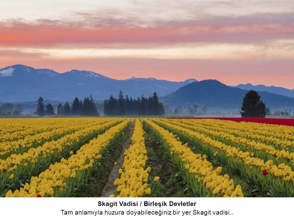 Skagit Vadisi / Birleşik Devletler Tam anlamıyla huzura doyabileceğiniz bir yer Skagit vadisi..