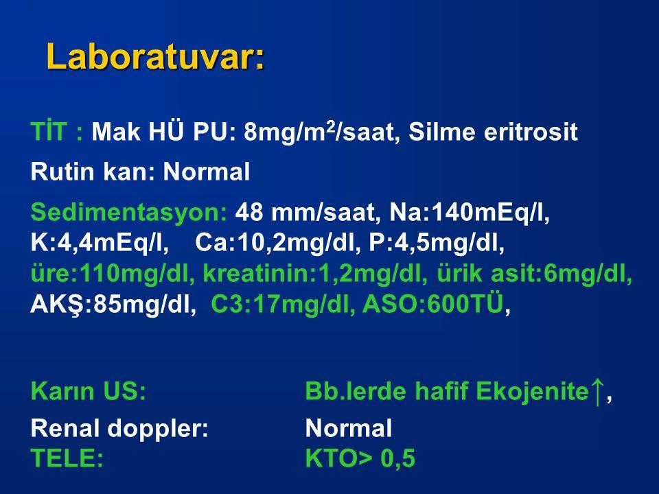 TİT : Mak HÜ PU: 8mg/m 2 /saat, Silme eritrosit Rutin kan: Normal Sedimentasyon: 48 mm/saat, Na:140mEq/l, K:4,4mEq/l, Ca:10,2mg/dl, P:4,5mg/dl, üre:11