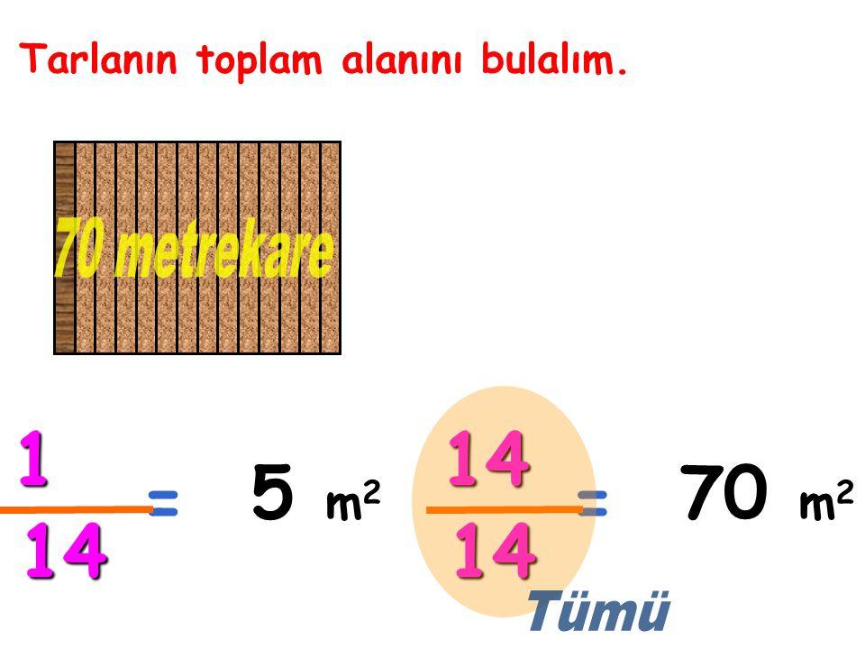 Tarlanın toplam alanını bulalım. = 1 14 5 m2m2m2m2 = 14 14 70 m2m2m2m2