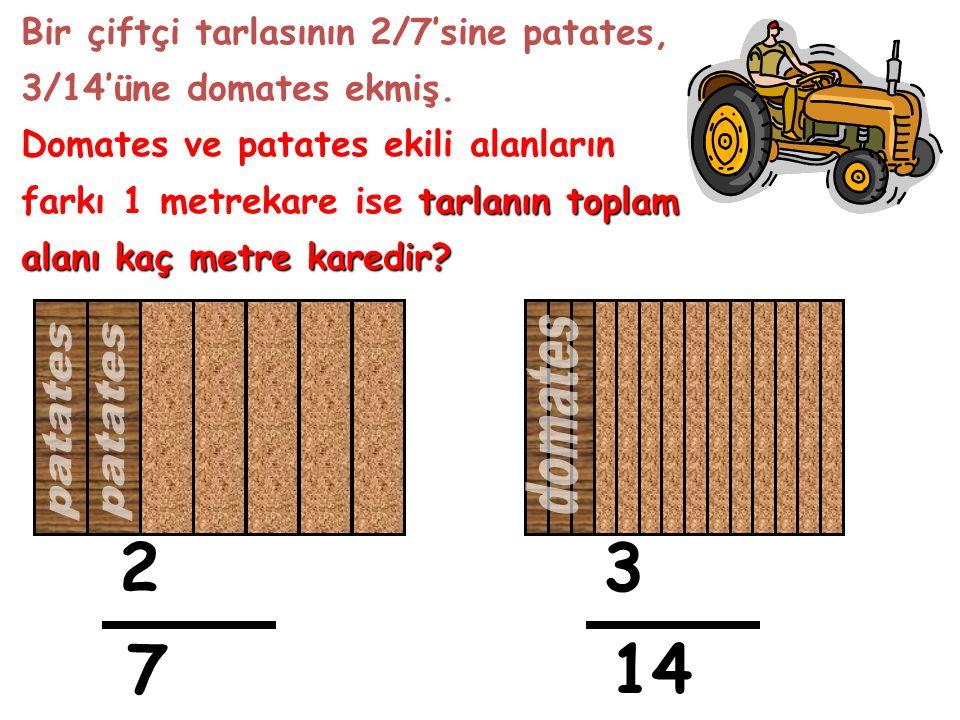 Bir çiftçi tarlasının 2/7'sine patates, 3/14'üne domates ekmiş. Domates ve patates ekili alanların farkı 1 metrekare ise t tt tarlanın toplam alanı ka