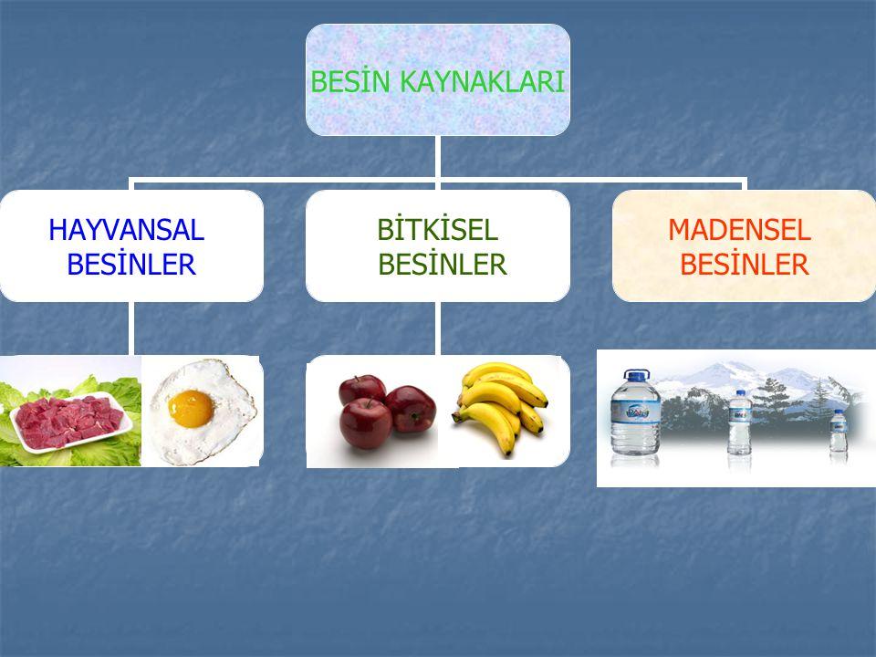 Yiyecekler birden fazla besin maddesi içerebilir.