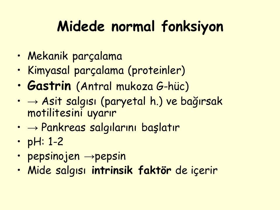 Midede normal fonksiyon Mekanik parçalama Kimyasal parçalama (proteinler) Gastrin (Antral mukoza G-hüc) → Asit salgısı (paryetal h.) ve bağırsak motil