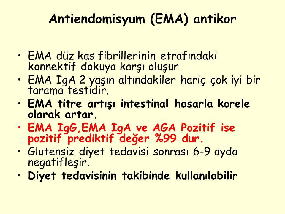 Antiendomisyum (EMA) antikor EMA düz kas fibrillerinin etrafındaki konnektif dokuya karşı oluşur. EMA IgA 2 yaşın altındakiler hariç çok iyi bir taram