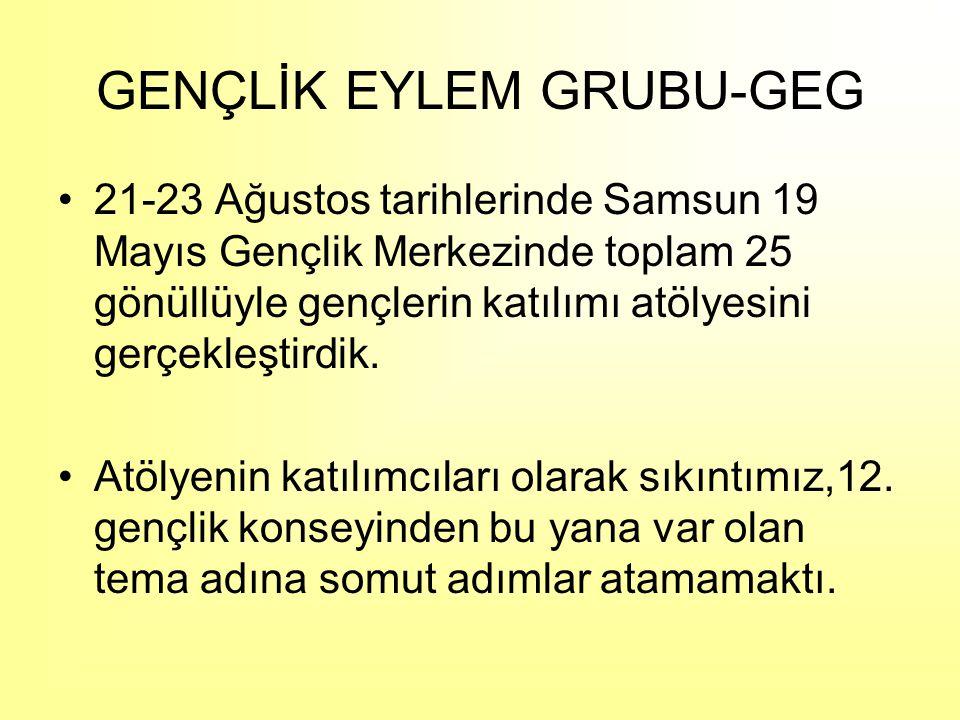 21-23 Ağustos tarihlerinde Samsun 19 Mayıs Gençlik Merkezinde toplam 25 gönüllüyle gençlerin katılımı atölyesini gerçekleştirdik.