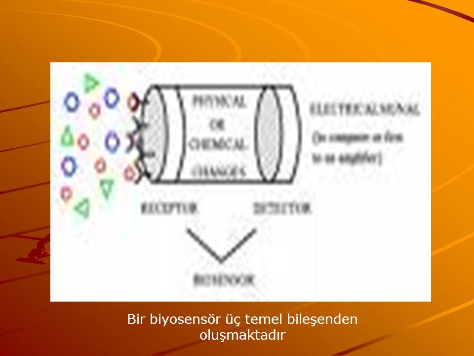Bir biyosensör üç temel bileşenden oluşmaktadır