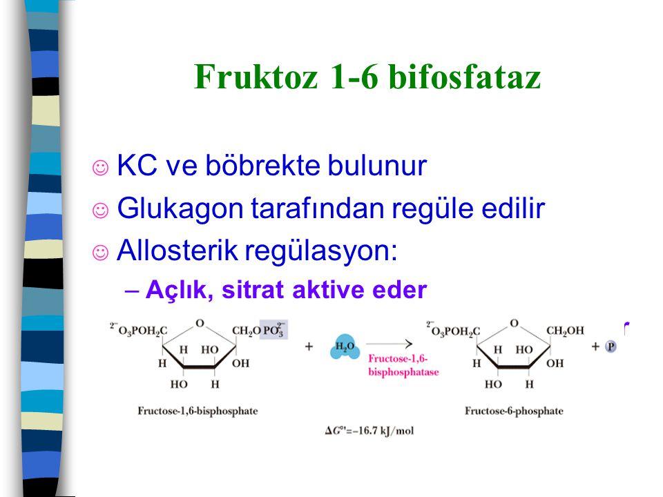 Fruktoz 1-6 bifosfataz J KC ve böbrekte bulunur J Glukagon tarafından regüle edilir J Allosterik regülasyon: –Açlık, sitrat aktive eder –Fruktoz 2-6 b