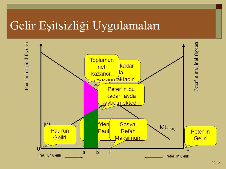 12-9 Varsayımların Değerlendirilmesi  Varsayım 1; temel olarak bireylerin benzer fayda fonksiyonuna sahip olduğunu tespit etmek imkansızdır.