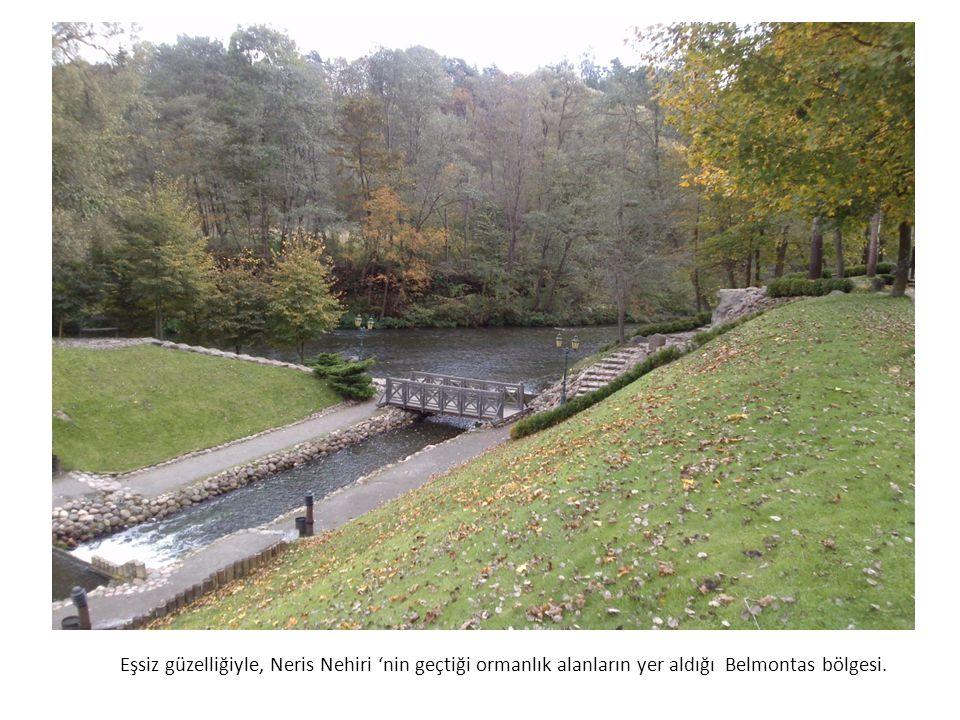Eşsiz güzelliğiyle, Neris Nehiri 'nin geçtiği ormanlık alanların yer aldığı Belmontas bölgesi.