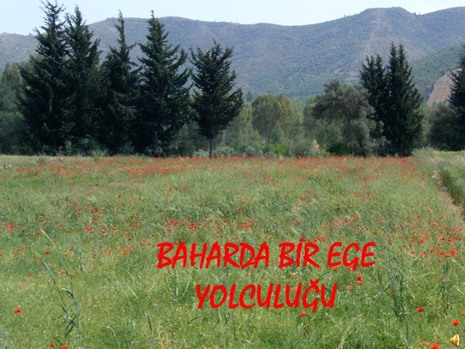 BAHARDA BİR EGE YOLCULUĞU