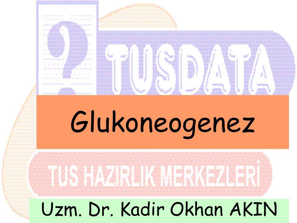 Glukoneogenez Uzm. Dr. Kadir Okhan AKIN