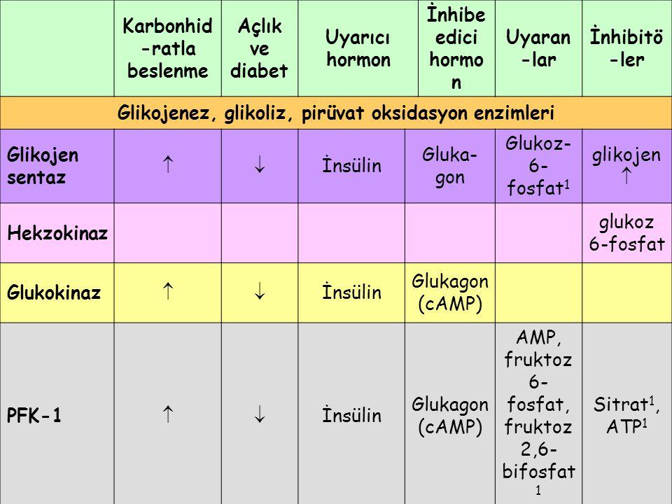 Karbonhid -ratla beslenme Açlık ve diabet Uyarıcı hormon İnhibe edici hormo n Uyaran -lar İnhibitö -ler Glikojenez, glikoliz, pirüvat oksidasyon enzim