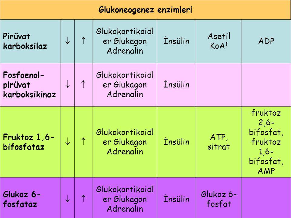 Glukoneogenez enzimleri Pirüvat karboksilaz  Glukokortikoidl er Glukagon Adrenalin İnsülin Asetil KoA 1 ADP Fosfoenol- pirüvat karboksikinaz  Gluk