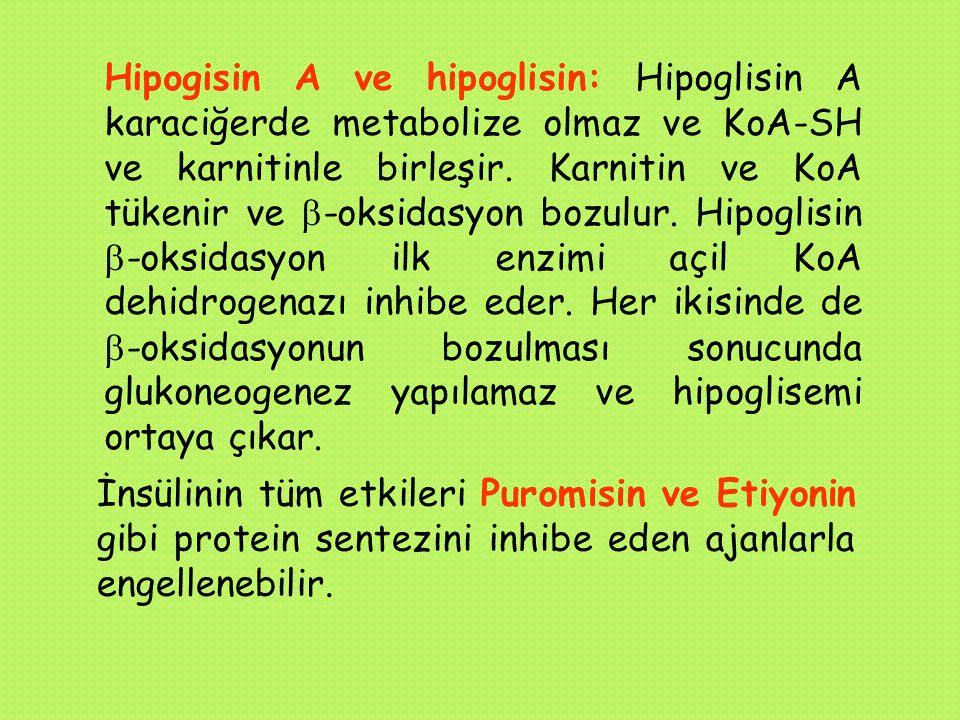Hipogisin A ve hipoglisin: Hipoglisin A karaciğerde metabolize olmaz ve KoA-SH ve karnitinle birleşir. Karnitin ve KoA tükenir ve  -oksidasyon bozulu
