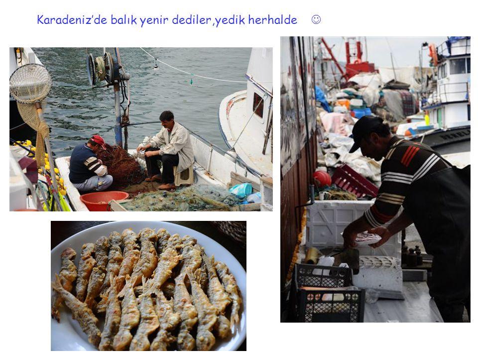 Karadeniz'de balık yenir dediler,yedik herhalde