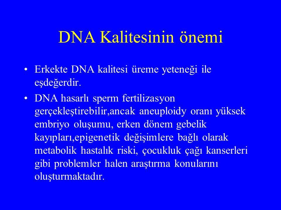 DNA Kalitesinin önemi Erkekte DNA kalitesi üreme yeteneği ile eşdeğerdir. DNA hasarlı sperm fertilizasyon gerçekleştirebilir,ancak aneuploidy oranı yü