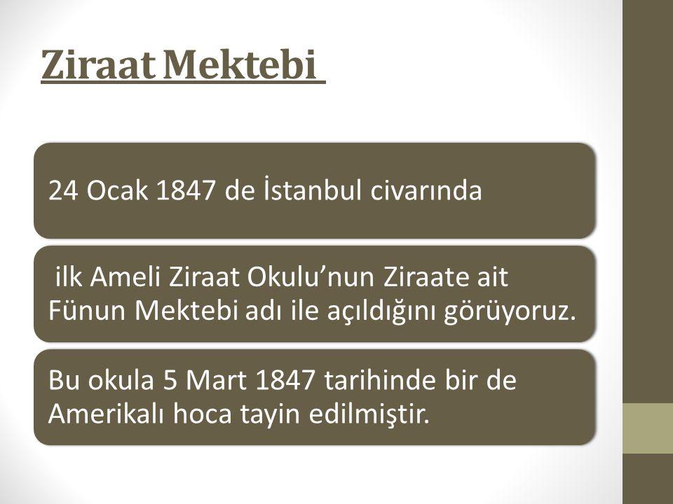 Ziraat Mektebi 24 Ocak 1847 de İstanbul civarında ilk Ameli Ziraat Okulu'nun Ziraate ait Fünun Mektebi adı ile açıldığını görüyoruz. Bu okula 5 Mart 1