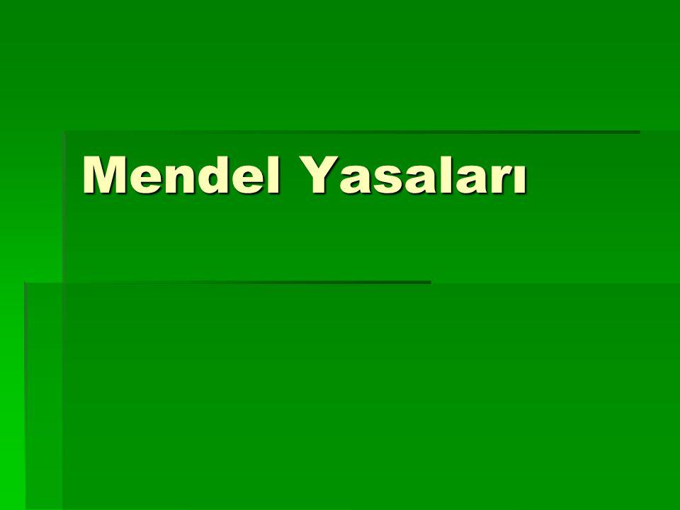 Mendel Yasaları
