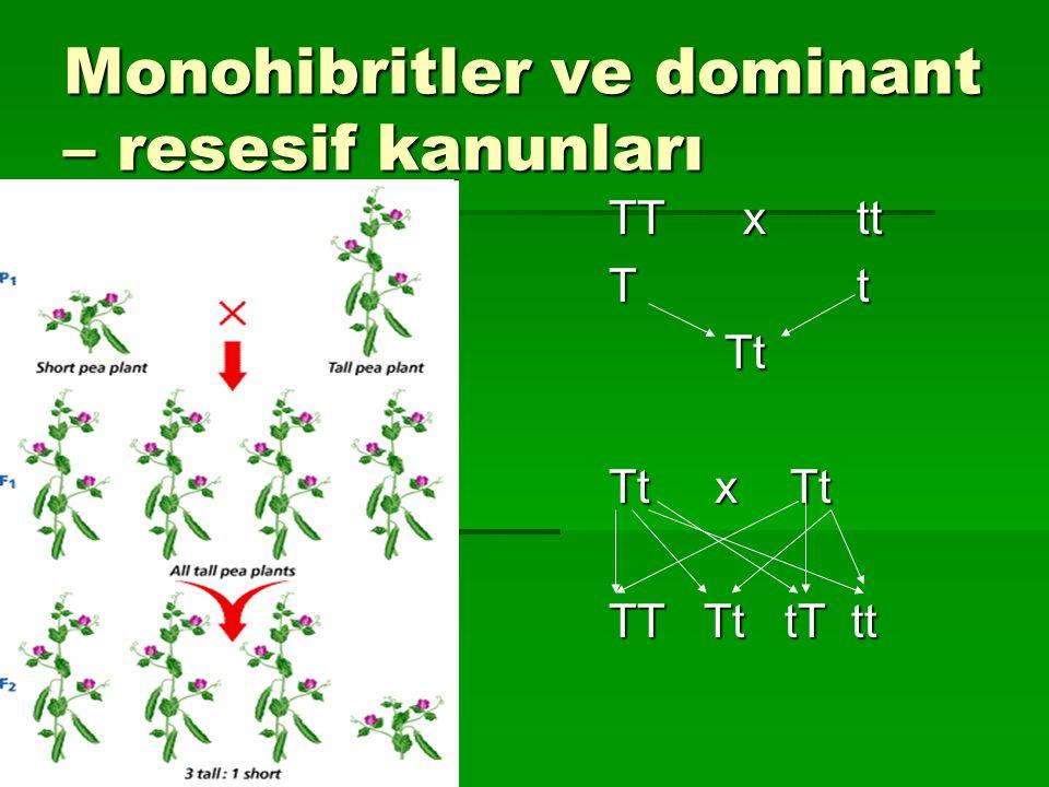 Monohibritler ve dominant – resesif kanunları TT x tt T t Tt Tt Tt x Tt TT Tt tT tt