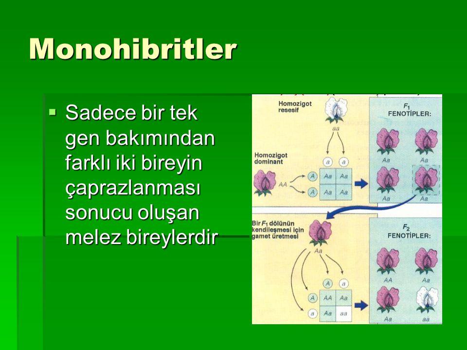 Monohibritler  Sadece bir tek gen bakımından farklı iki bireyin çaprazlanması sonucu oluşan melez bireylerdir