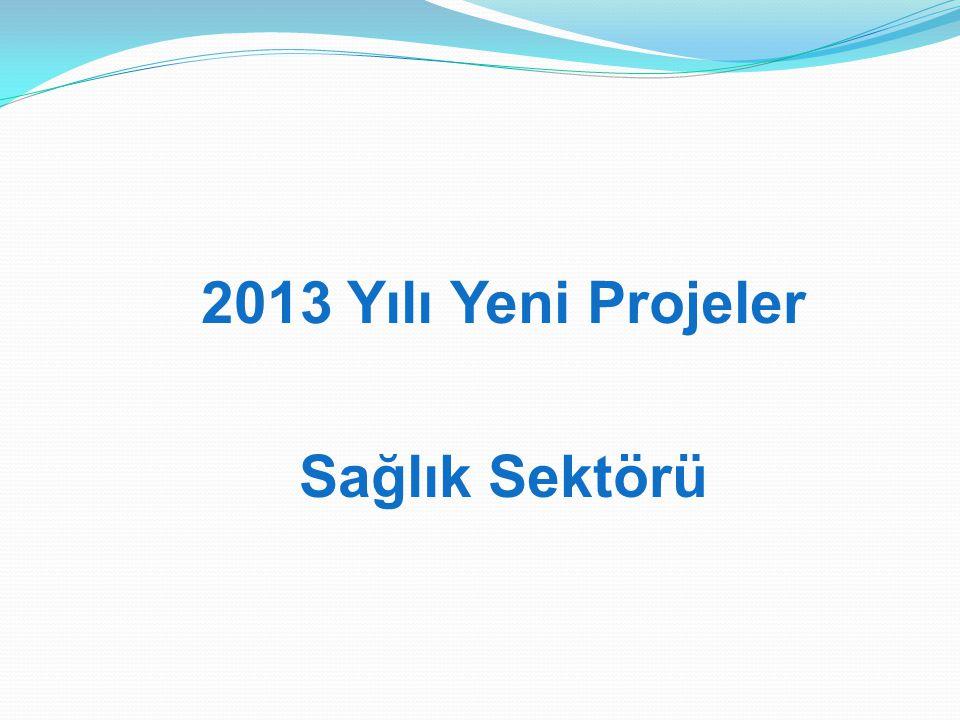 2013 Yılı Yeni Projeler Sağlık Sektörü