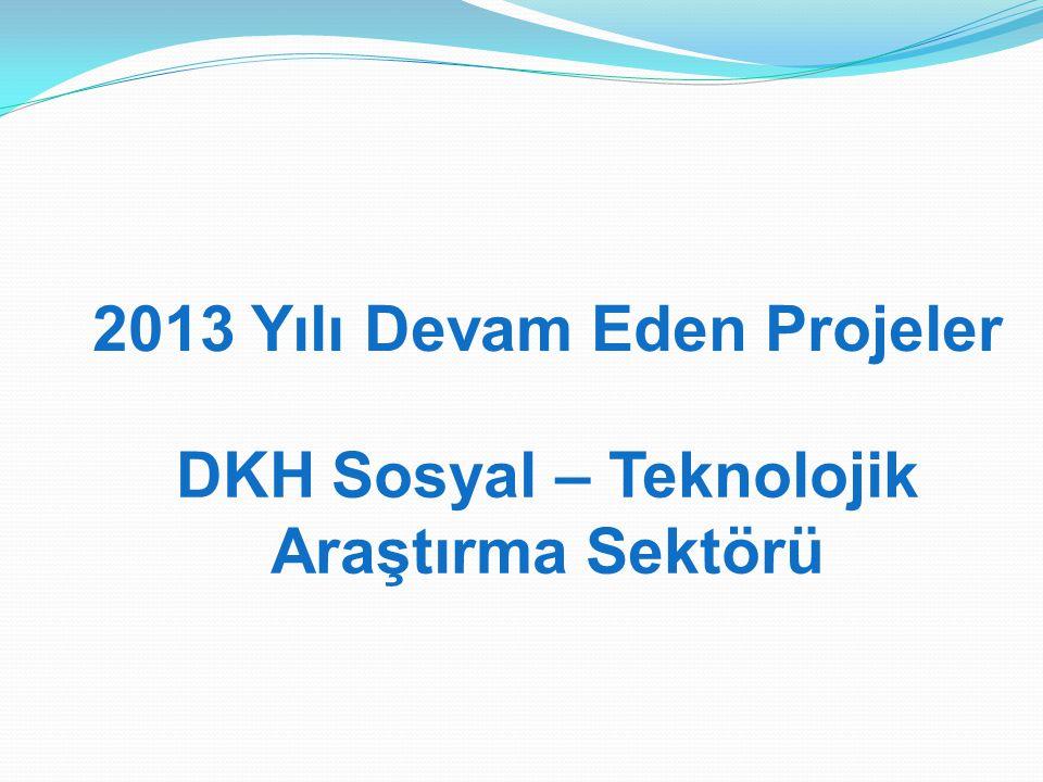 2013 Yılı Devam Eden Projeler DKH Sosyal – Teknolojik Araştırma Sektörü