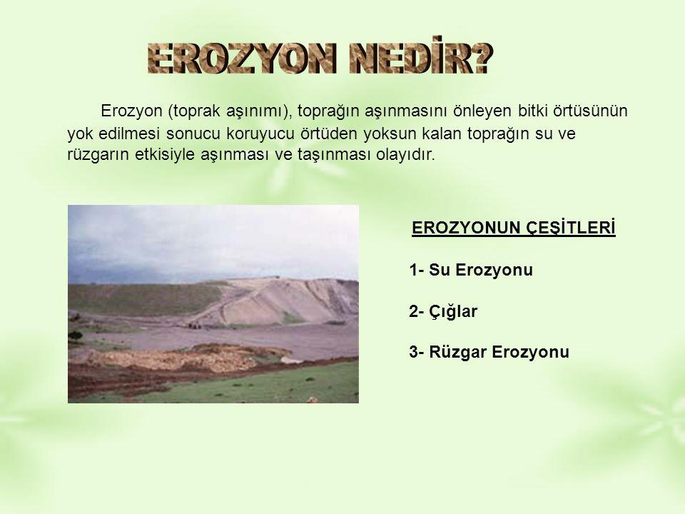 Erozyon (toprak aşınımı), toprağın aşınmasını önleyen bitki örtüsünün yok edilmesi sonucu koruyucu örtüden yoksun kalan toprağın su ve rüzgarın etkisi