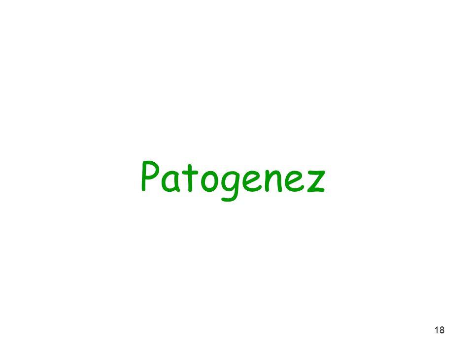 18 Patogenez