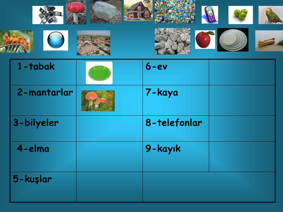 1-tabak6-ev 2-mantarlar7-kaya 3-bilyeler8-telefonlar 4-elma9-kayık 5-kuşlar
