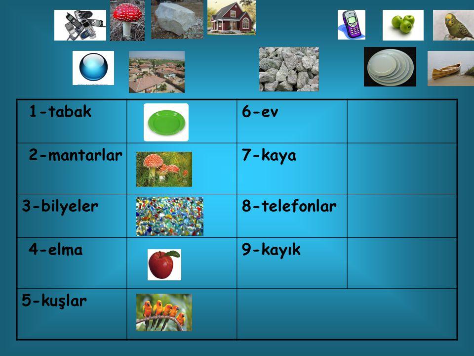 1-tabak6-ev 2- mantarlar 7-kaya 3-bilyeler8-telefonlar 4-elma9-kayık 5-kuşlar