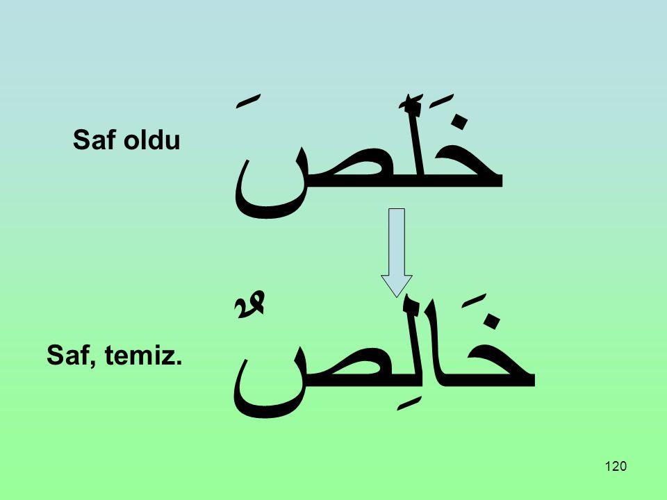 119 حَلُمَ حَالِمٌ ـ حَالِمَةٌ Ağırbaşlı oldu Ağırbaşlı