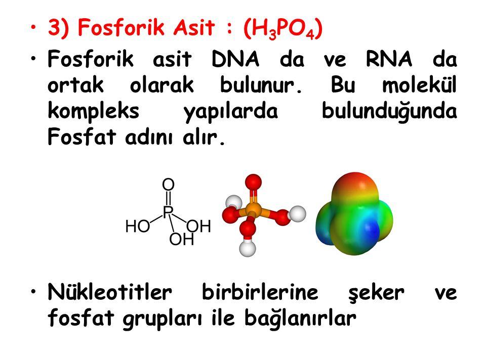 Nükleotidler yapılarındaki organik baza göre isimlendirilirler.