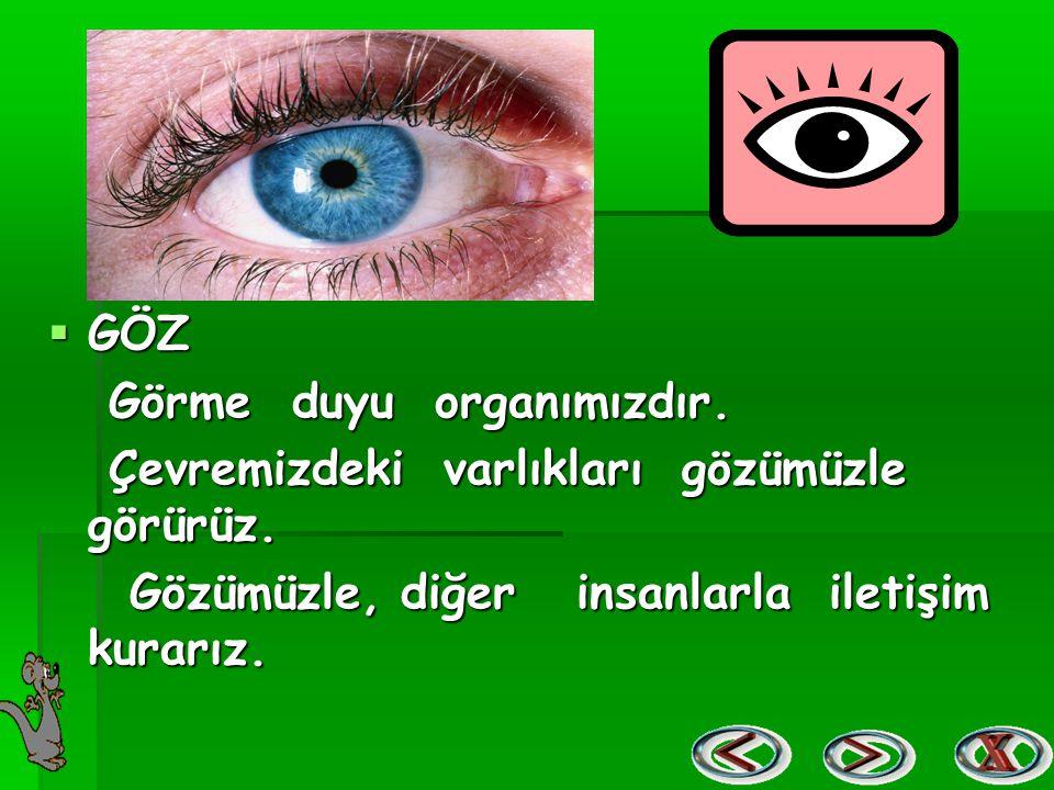  GÖZ Görme duyu organımızdır. Görme duyu organımızdır. Çevremizdeki varlıkları gözümüzle görürüz. Çevremizdeki varlıkları gözümüzle görürüz. Gözümüzl