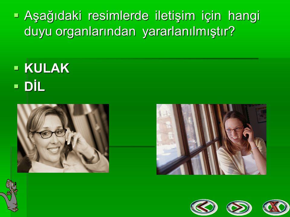  Aşağıdaki resimlerde iletişim için hangi duyu organlarından yararlanılmıştır?  KULAK  DİL