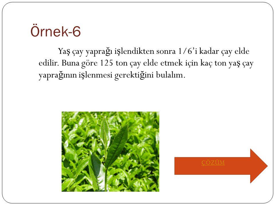 Örnek-6 Ya ş çay yapra ğ ı i ş lendikten sonra 1/6'i kadar çay elde edilir.