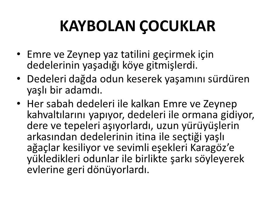 Evet, çocuklar, Emre ve Zeynep'in söylediği şarkıyı bizde söyleyelim mi.