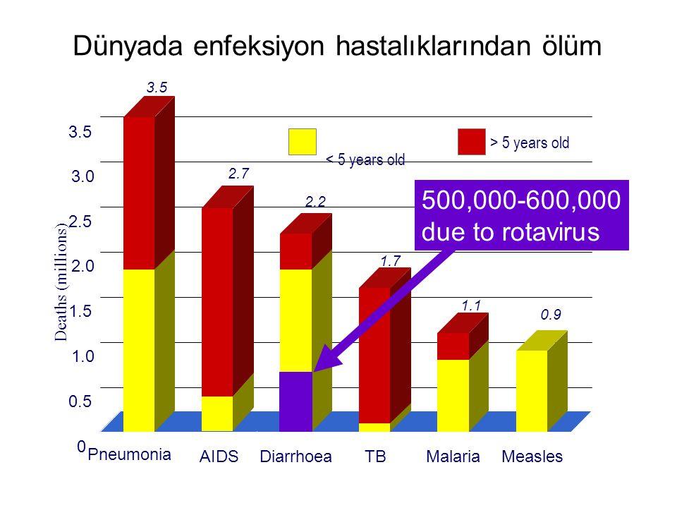 Dünyada enfeksiyon hastalıklarından ölüm Deaths (millions) < 5 years old > 5 years old 0 0.5 1.0 1.5 2.0 2.5 3.0 3.5 Pneumonia AIDSDiarrhoeaTBMalariaM