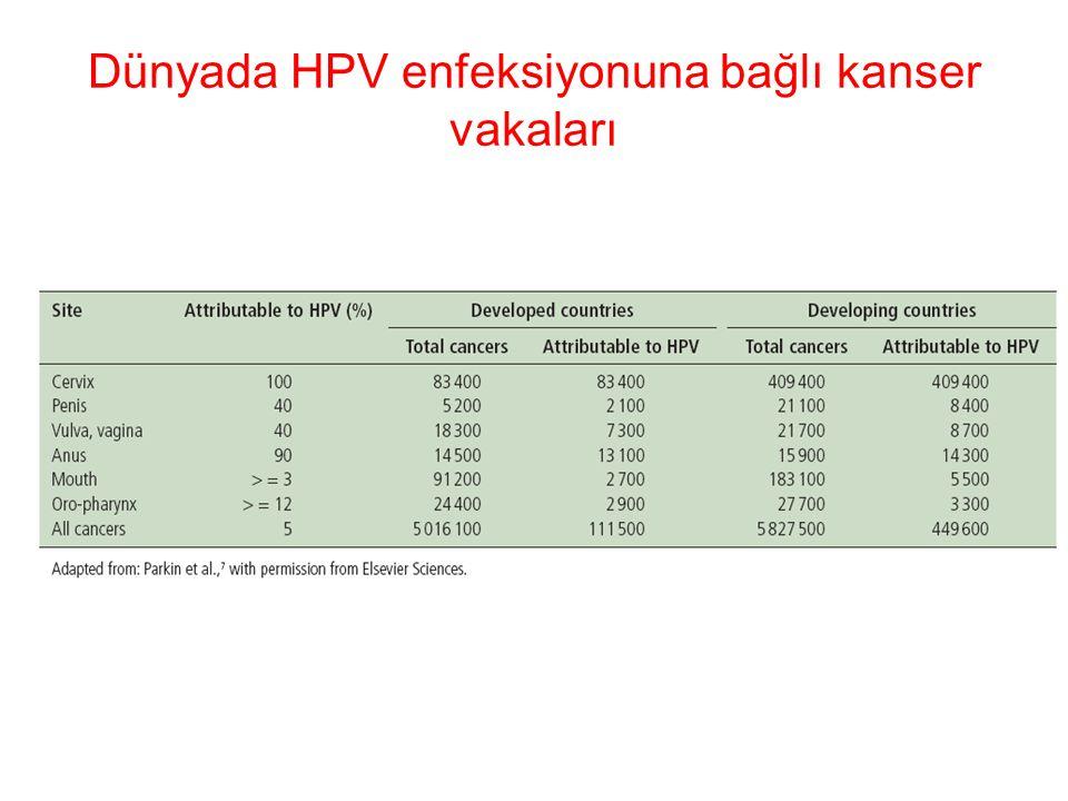 Dünyada HPV enfeksiyonuna bağlı kanser vakaları
