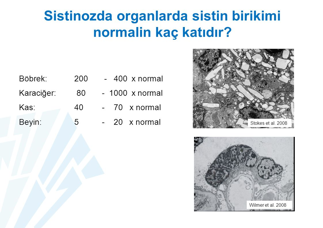 Sistinozda organlarda sistin birikimi normalin kaç katıdır.