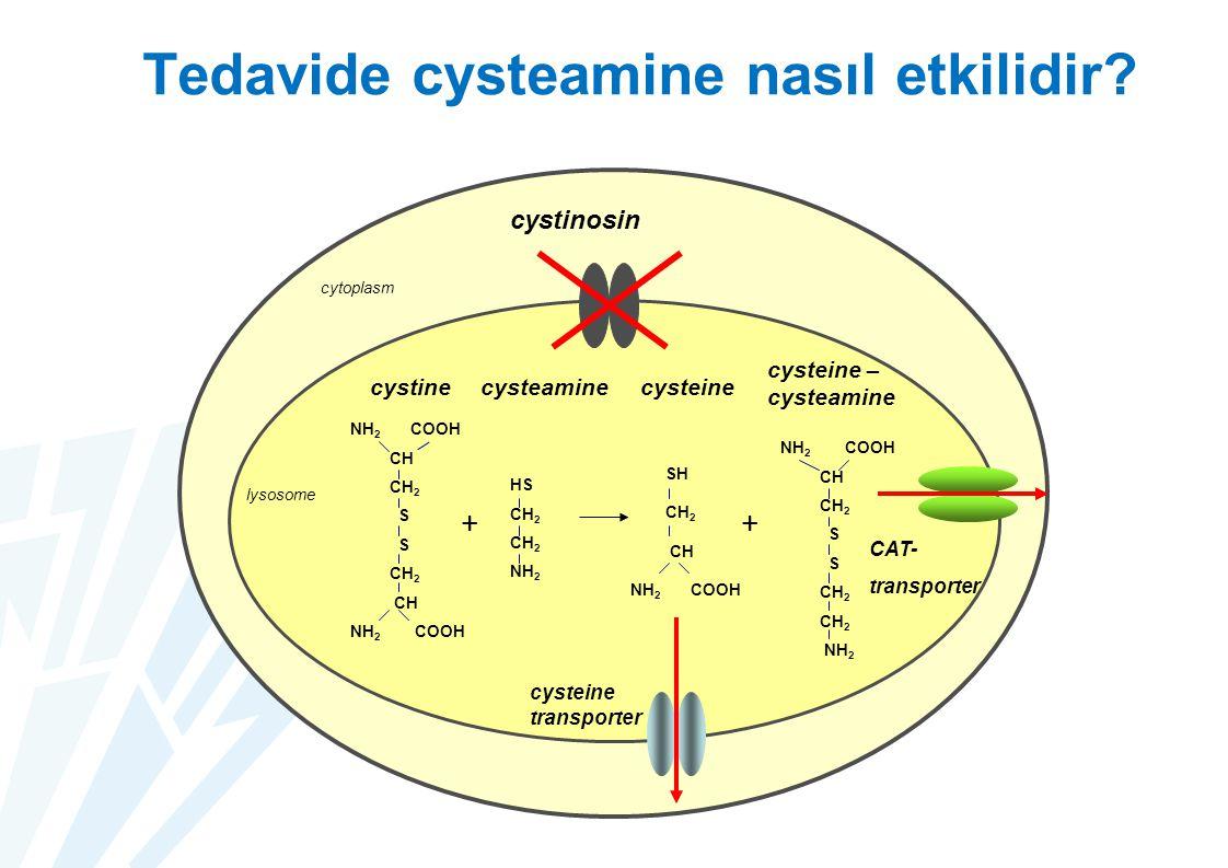 24 Tedavide cysteamine nasıl etkilidir? cystine cytoplasm cystinosin lysosome NH 2 COOH CH CH 2 S CH 2 CH NH 2 COOH + HS CH 2 NH 2 SH CH 2 CH NH 2 COO