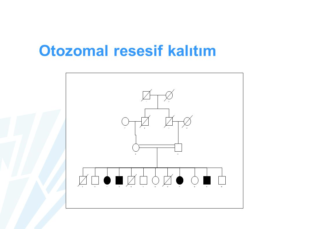 Otozomal resesif kalıtım 12 345 6 7 8 910111213141516171819 20
