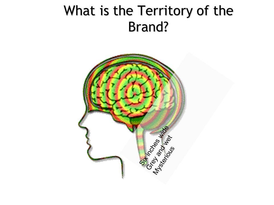 Recap of Consumer Research  Secondary Benefits: User 1.