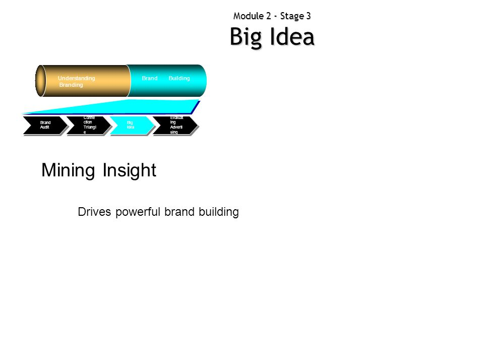 Module 2 - Stage 3 Big Idea Understanding Branding Brand Building Evaluat ing Adverti sing Big Idea Conne ction Triangl e Brand Audit Mining Insight D