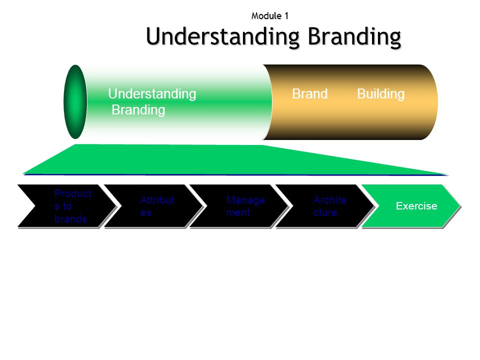 Attribut es Module 1 Understanding Branding Understanding Branding Brand Building Exercise Archite cture Manage ment Product s to brands Exercise