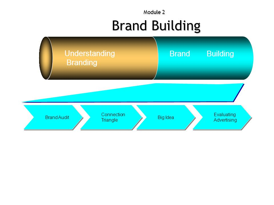 Module 2 Brand Building Understanding Branding Brand Building Evaluating Advertising Big Idea Connection Triangle Brand Audit