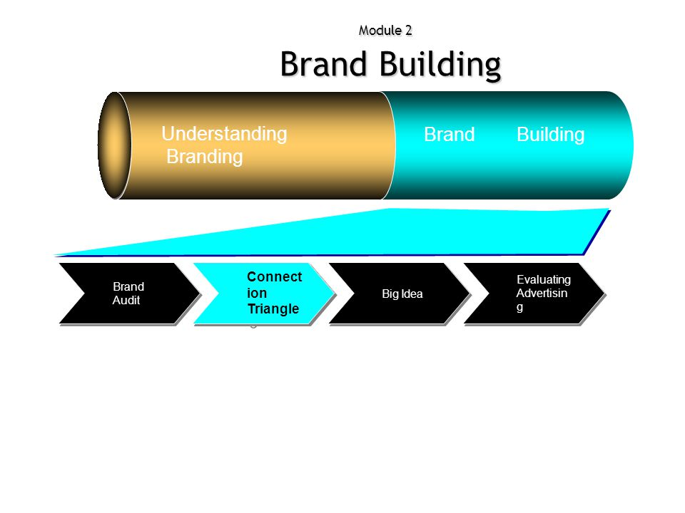 Module 2 Brand Building Understanding Branding Brand Building Evaluating Advertisin g Big Idea Connec tion Triangl e Brand Audit Connect ion Triangle