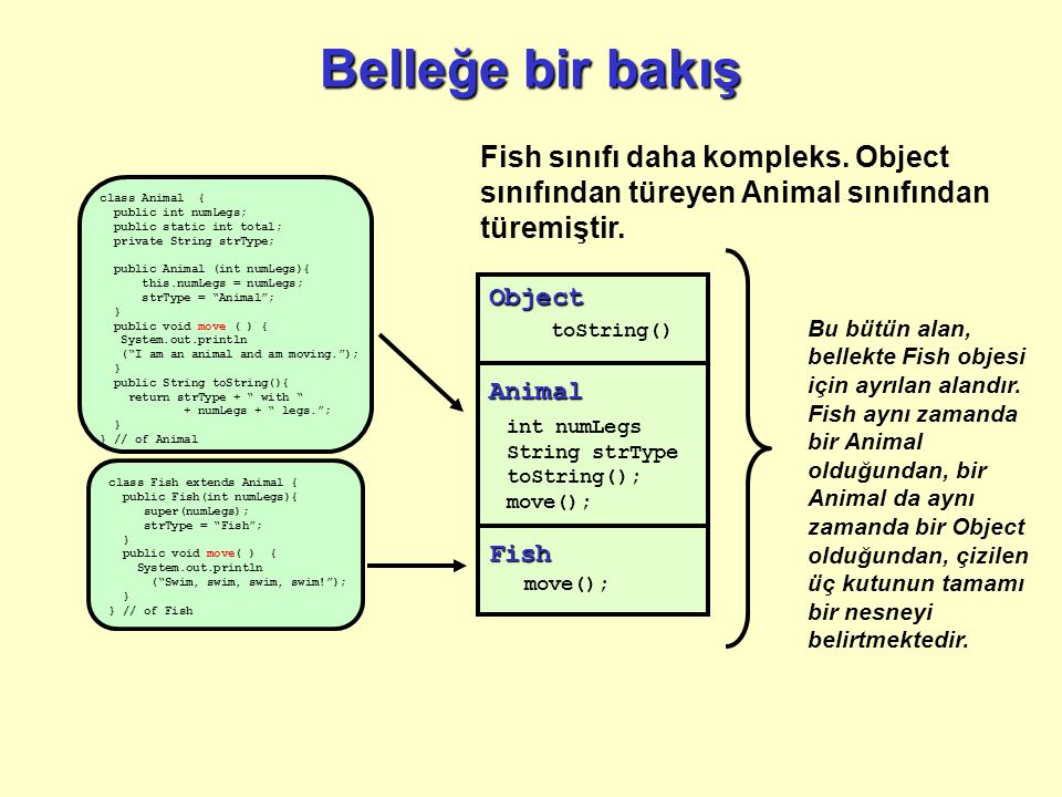 Belleğe bir bakış class Animal { public int numLegs; public static int total; private String strType; public Animal (int numLegs){ this.numLegs = numLegs; strType = Animal ; } public void move ( ) { System.out.println ( I am an animal and am moving. ); } public String toString(){ return strType + with + numLegs + legs. ; } } // of Animal Fish sınıfı daha kompleks.